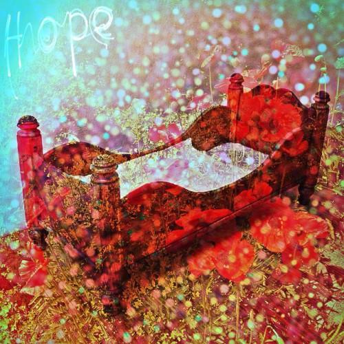 Cathrin Gressieker-poppy bed