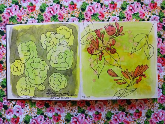 Cathrin Gressieker_Thaibook3