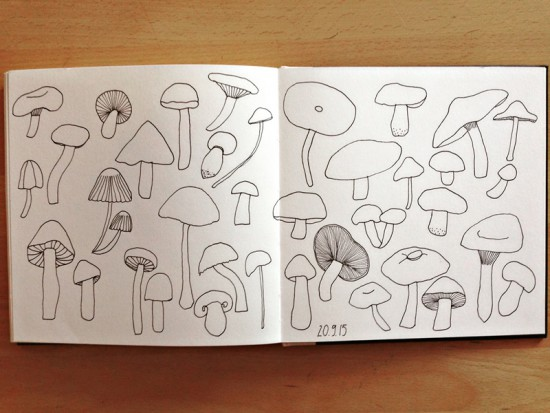 Cathrin Gressieker_mushrooms sketchbook