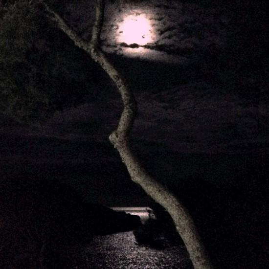Cathrin Gressieker_mallorca moon