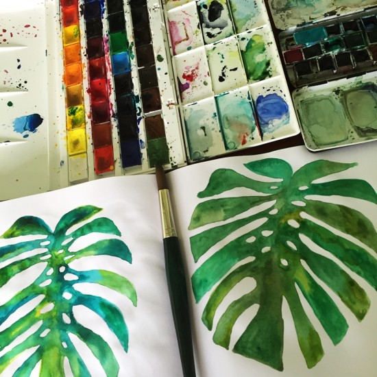 Cathrin Gressieker_philodendron sketches
